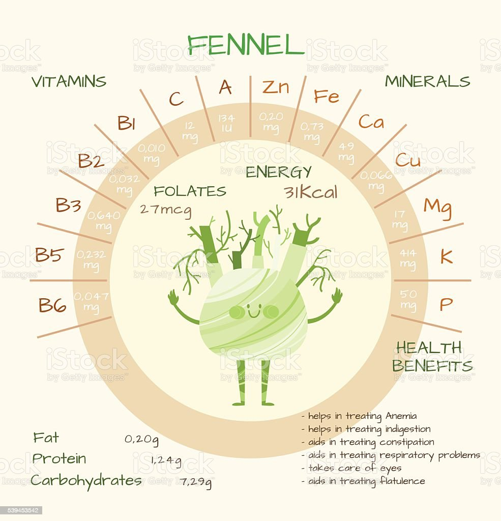 Vitamins and minerals vector art illustration