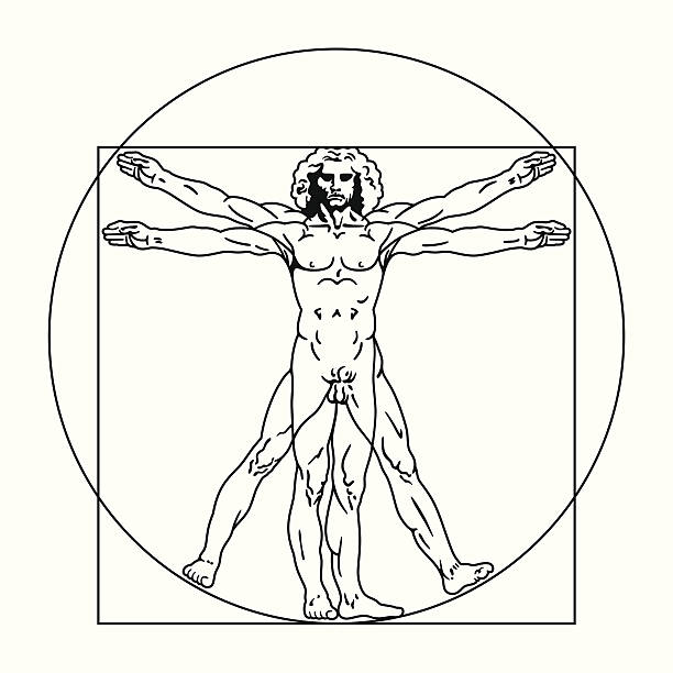 Vitruvian Man Clip Art, Vector Images & Illustrations - iStock