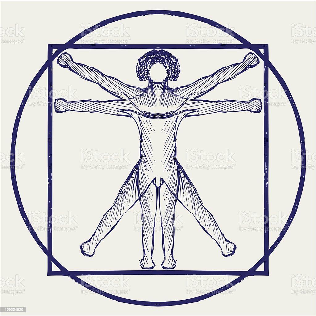 Vitruvian man vector art illustration