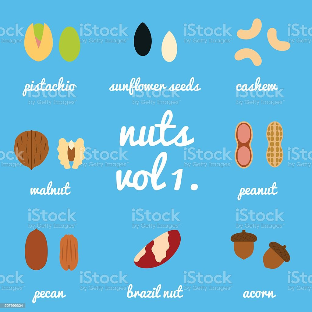 Vol 1. nuts and seeds icon set vector art illustration