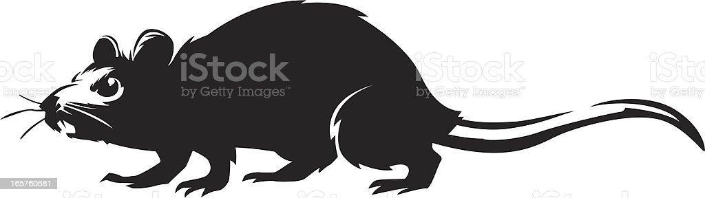 walking rat royalty-free stock vector art