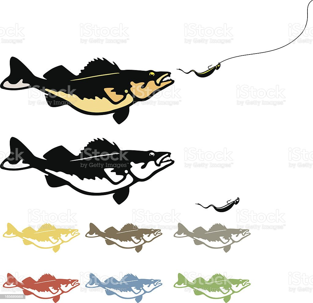 Walleye Chasing Lure vector art illustration