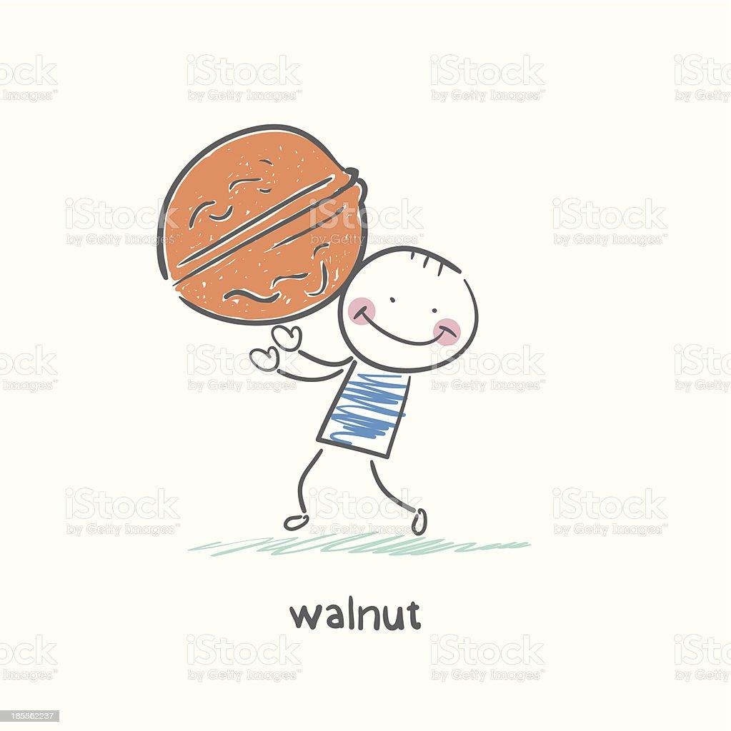 Walnut and people vector art illustration