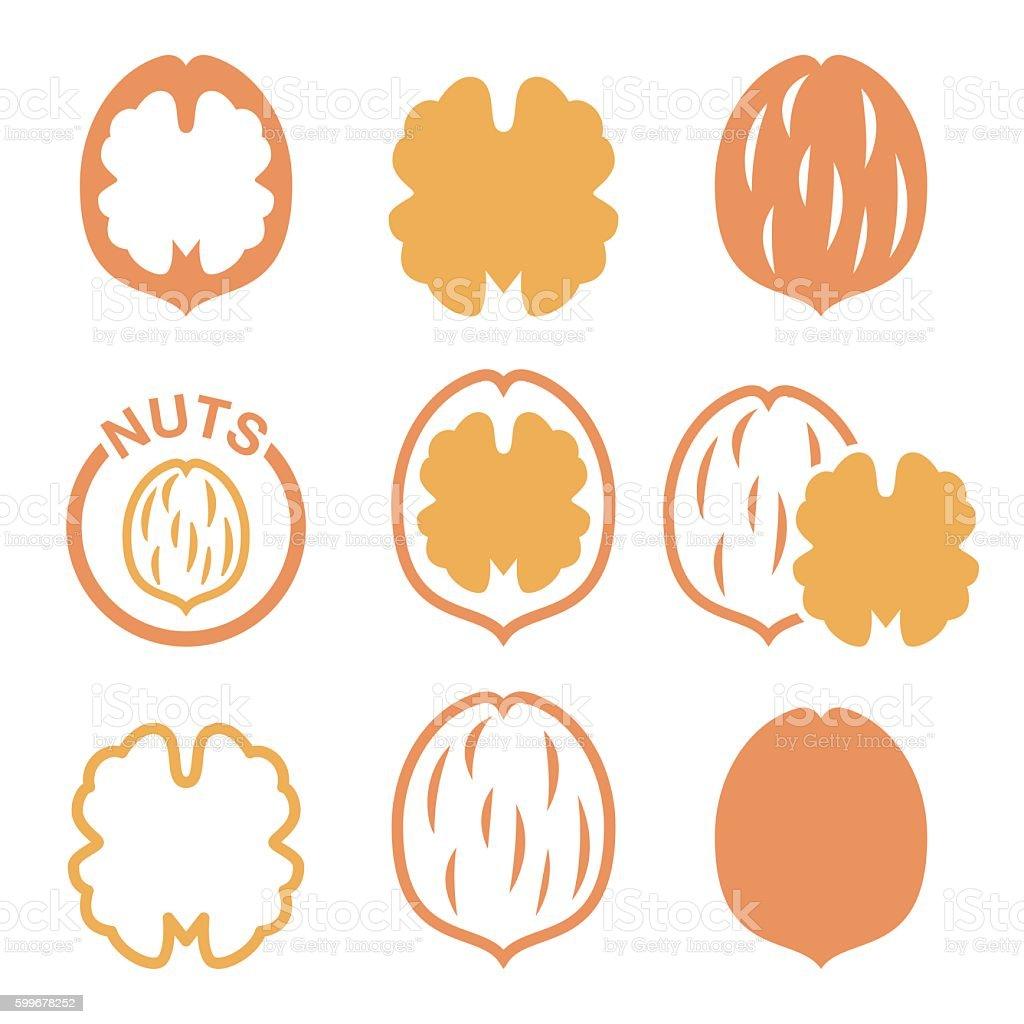 Walnut, nutshell vector icons set vector art illustration