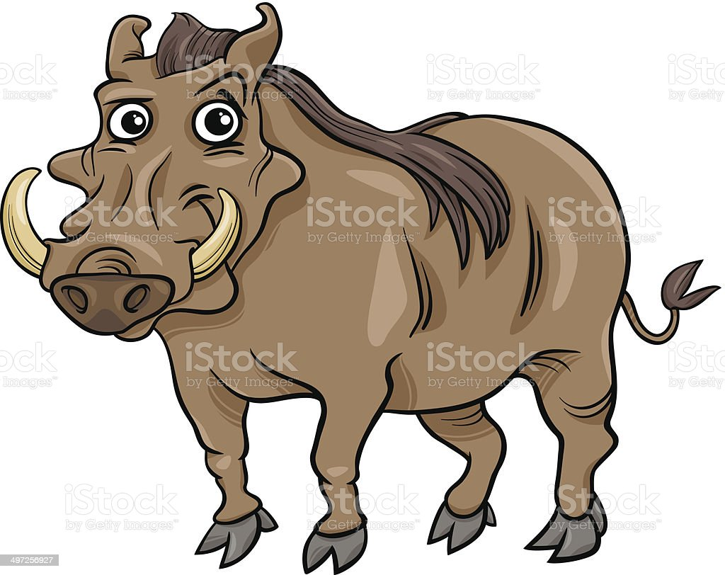 warthog animal cartoon illustration royalty-free stock vector art