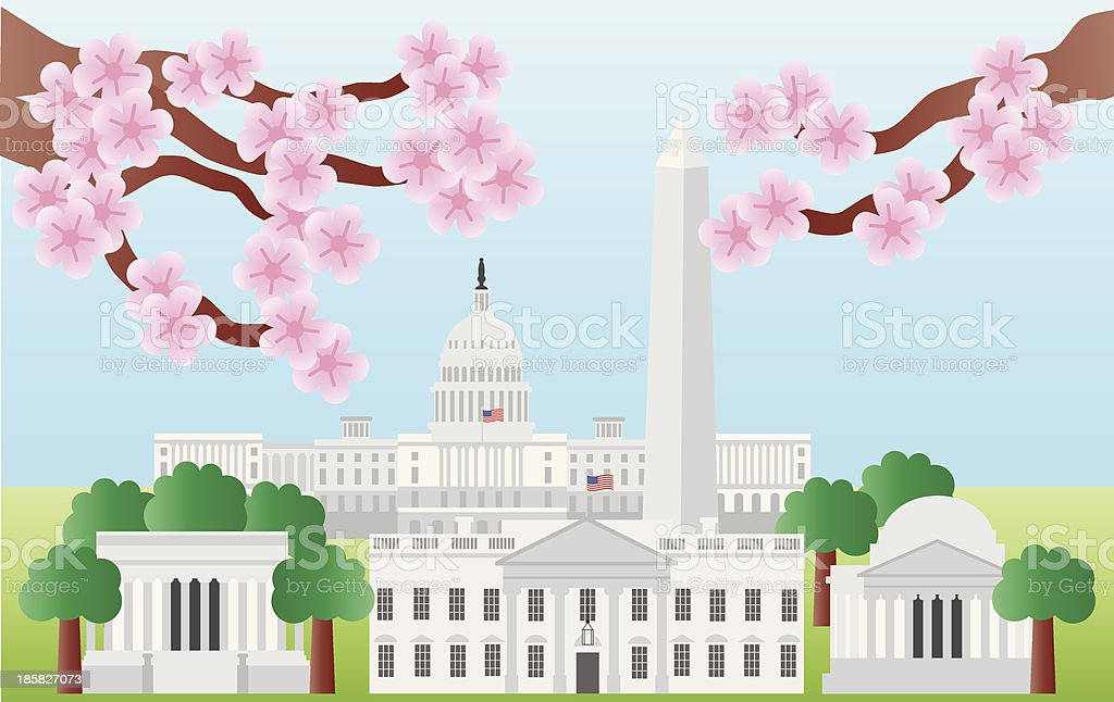 Washington DC Landmarks with Cherry Blossom Vector Illustration vector art illustration