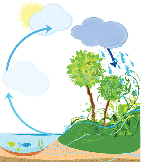 water cycle clip art - photo #41
