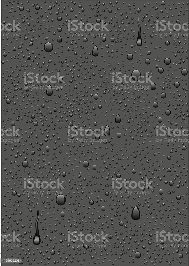 Water Drops and Condensation vector art illustration