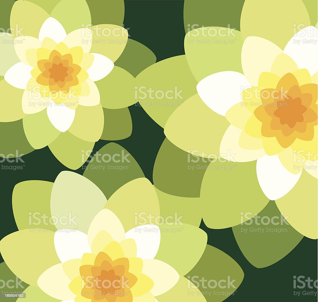 Water lily background royalty-free stock vector art