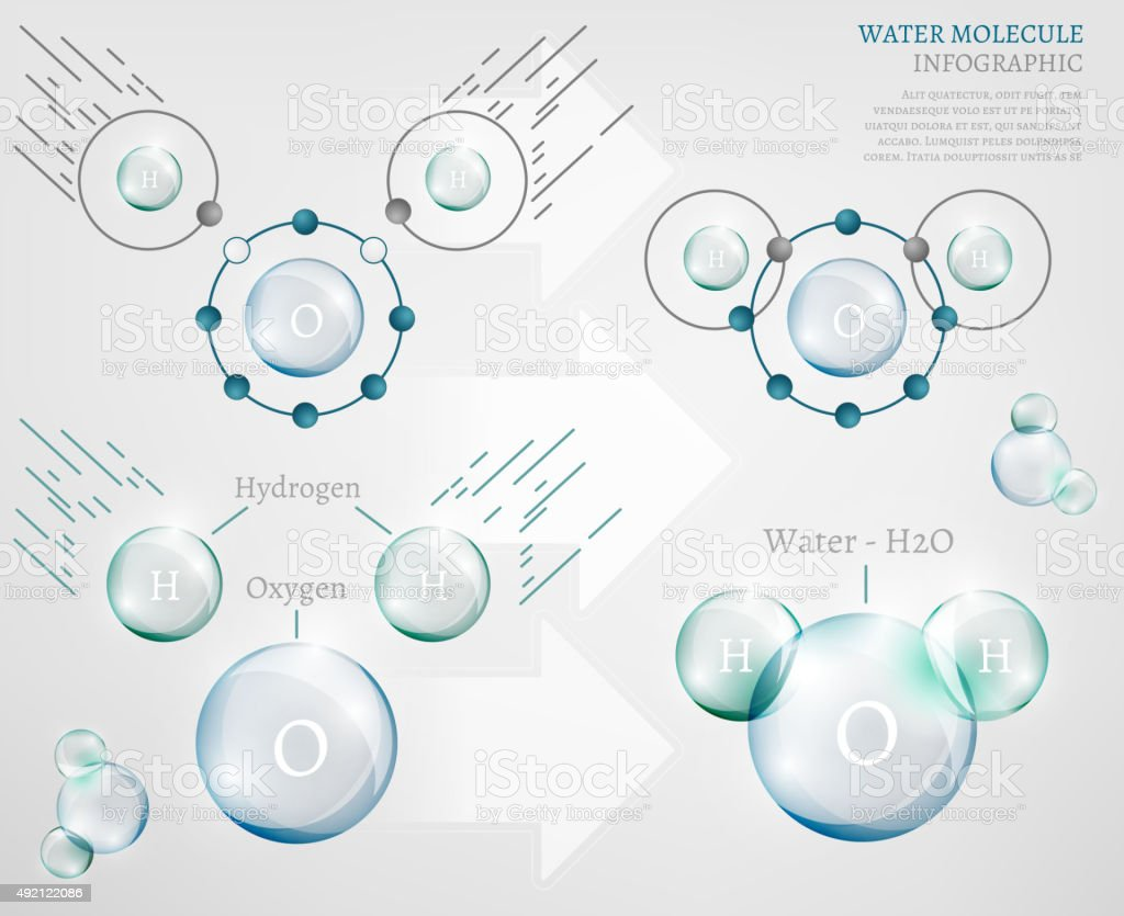 Water molecule vector art illustration