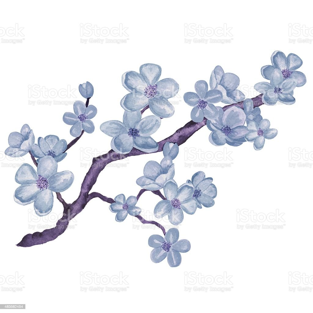Watercolor branch blossom sakura, blue cherry tree with flowers...