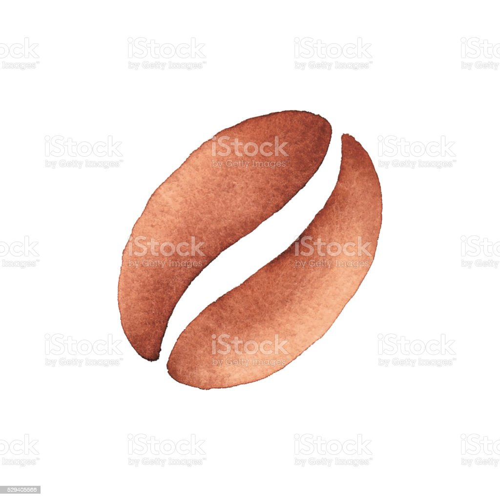Watercolor Coffee Bean vector art illustration