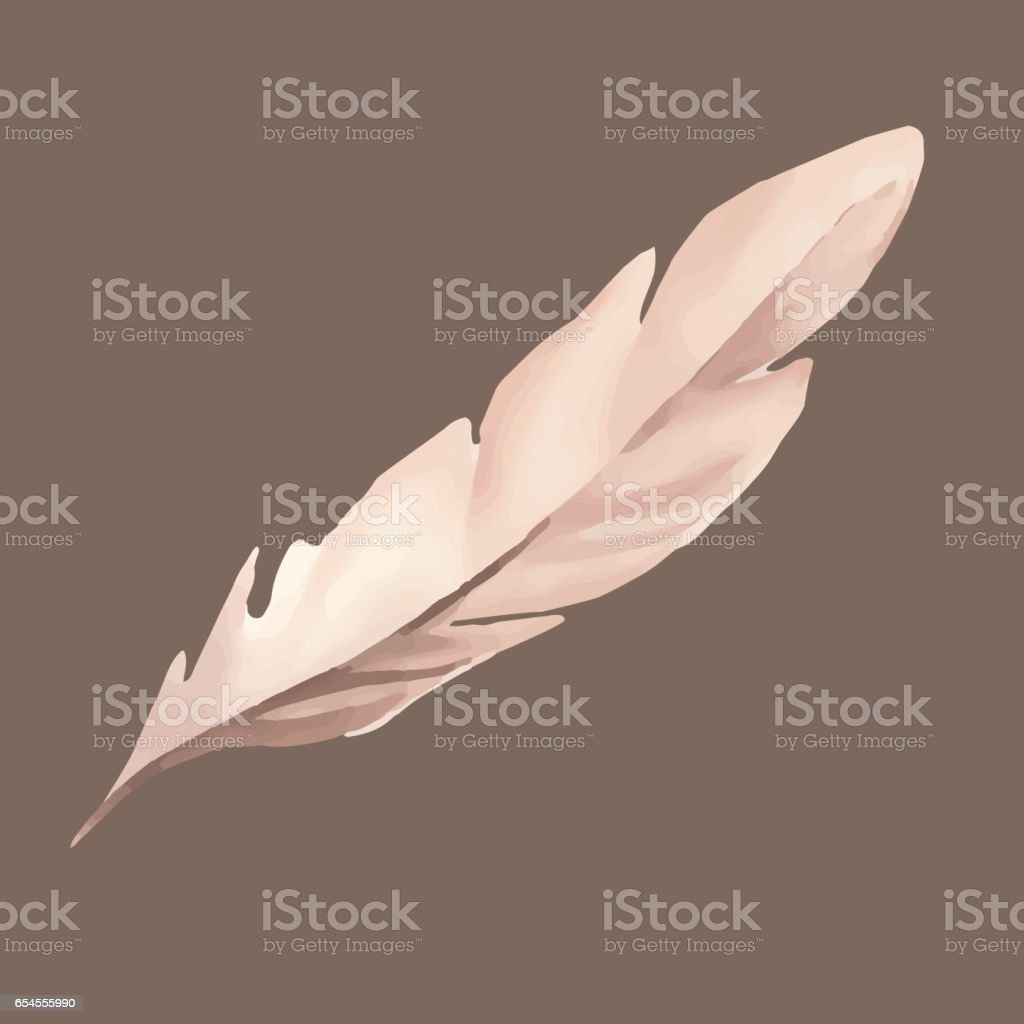 Watercolor feather vector art illustration