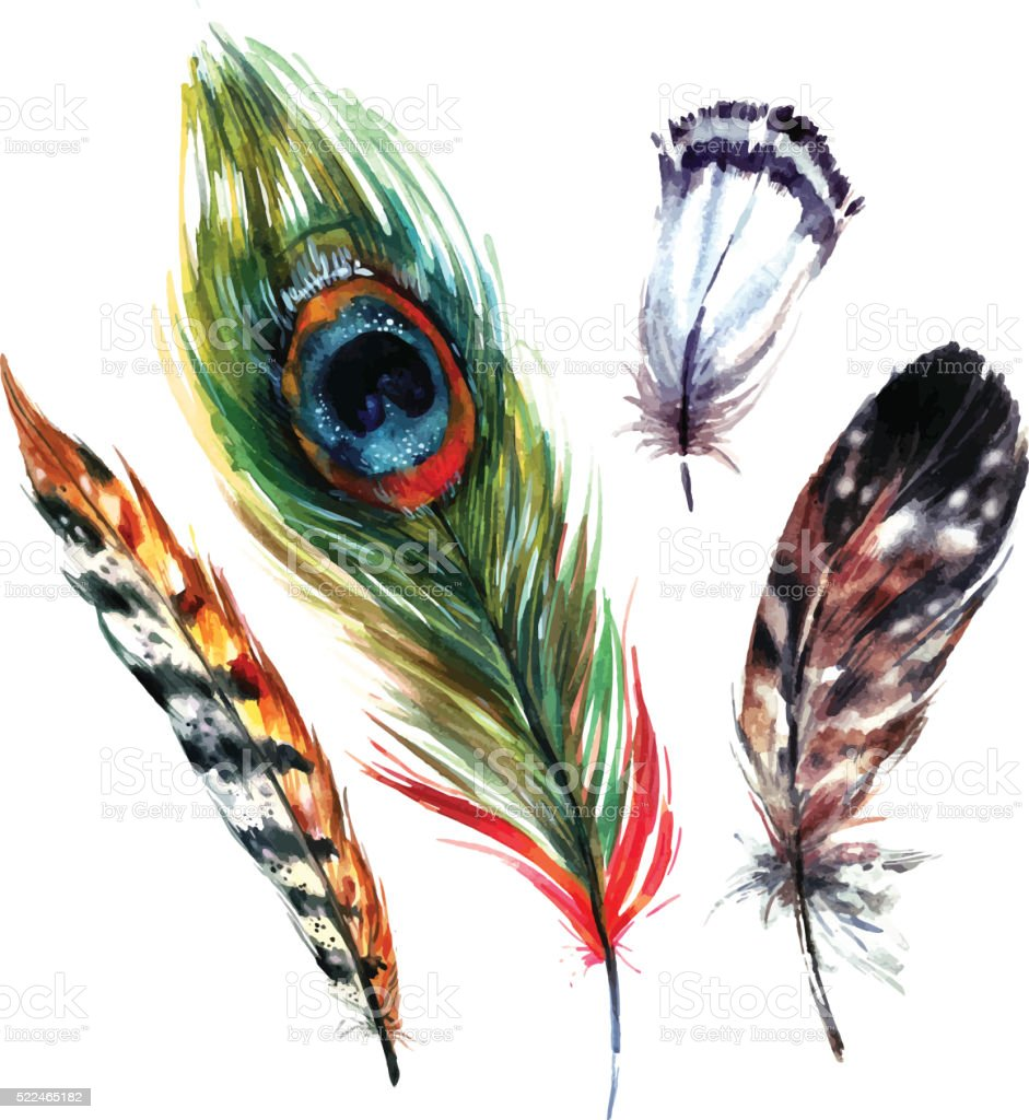 Watercolor Feathers Set vector art illustration