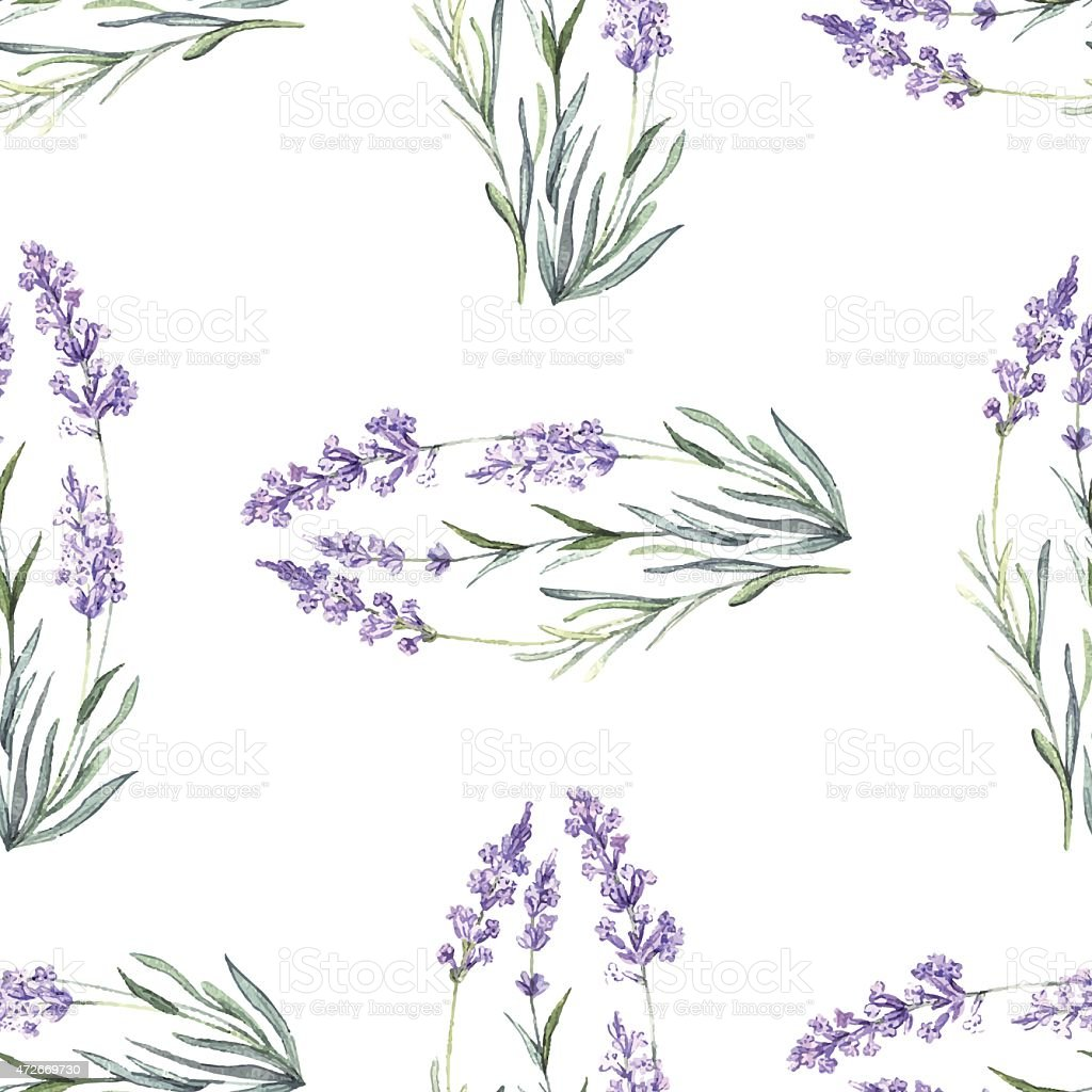 Watercolor floral lavender pattern vector art illustration