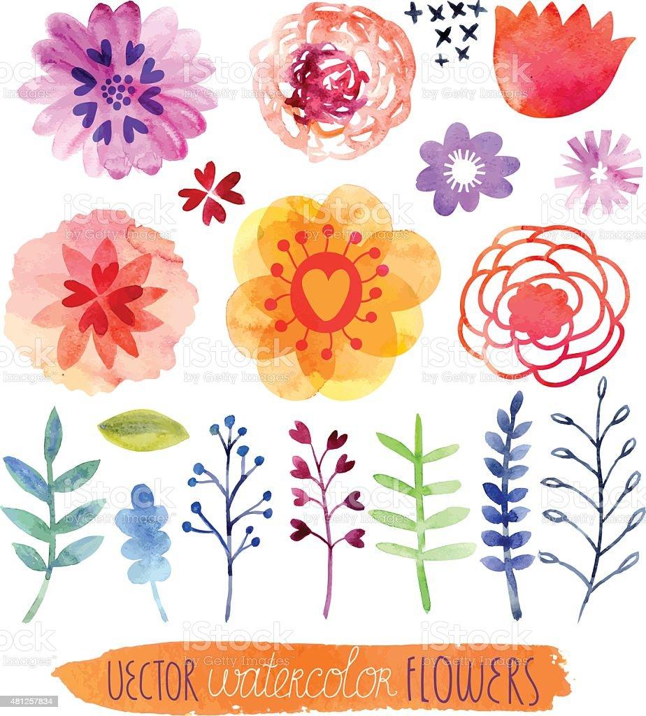 Watercolor floral set vector art illustration