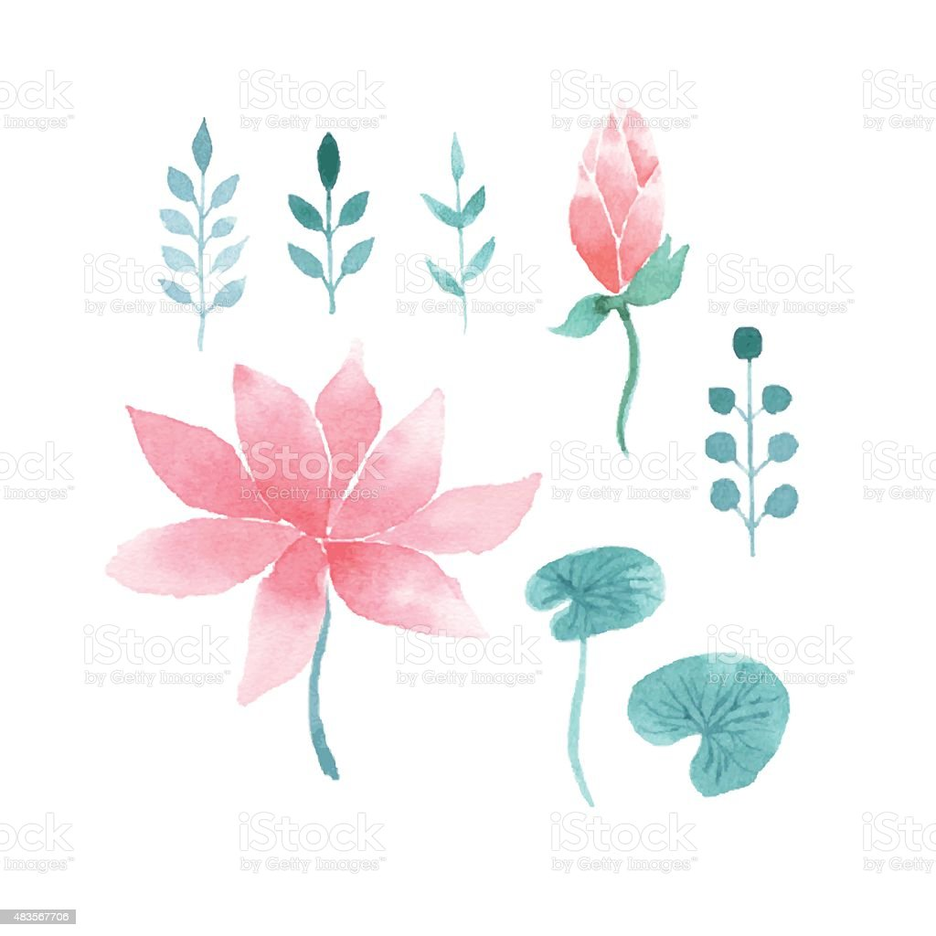 Watercolor floral set with lotus flowers vector art illustration