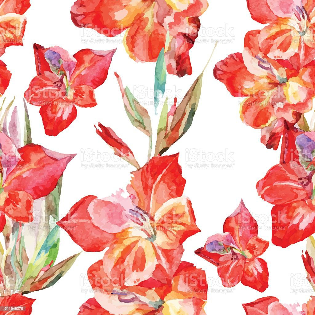 watercolor flowers glagiolus on a white background vector art illustration