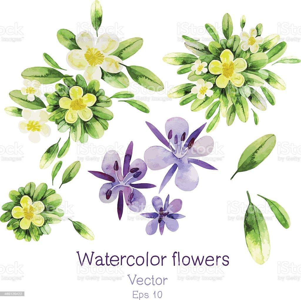Watercolor flowers vector art illustration