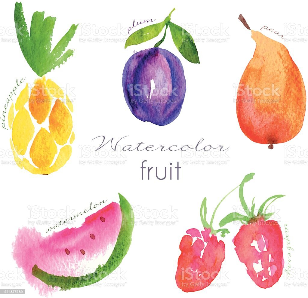 Watercolor fruit set vector art illustration