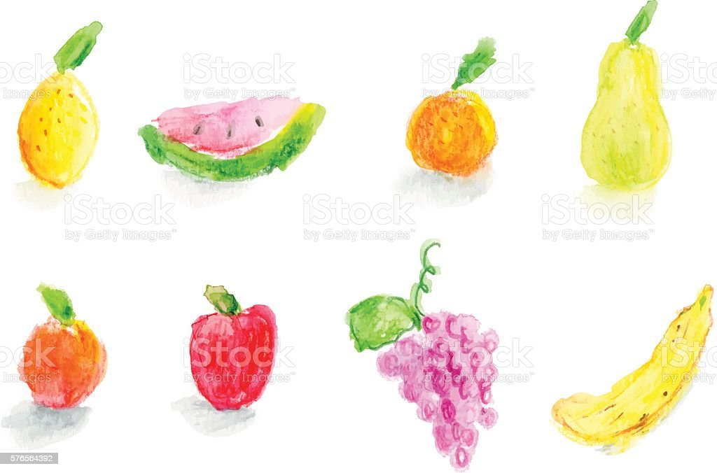Watercolor Fruits vector art illustration