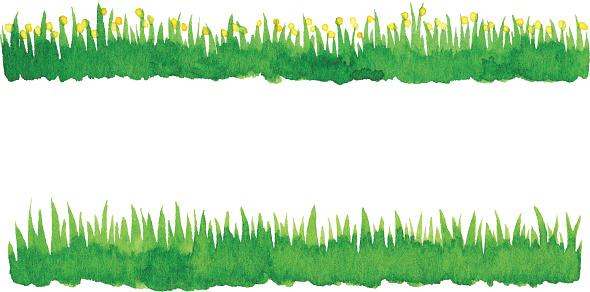 blade of grass vector - photo #7