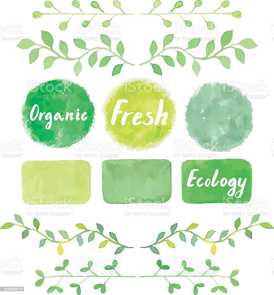 Watercolor green logos and laurel leaves set. vector art illustration