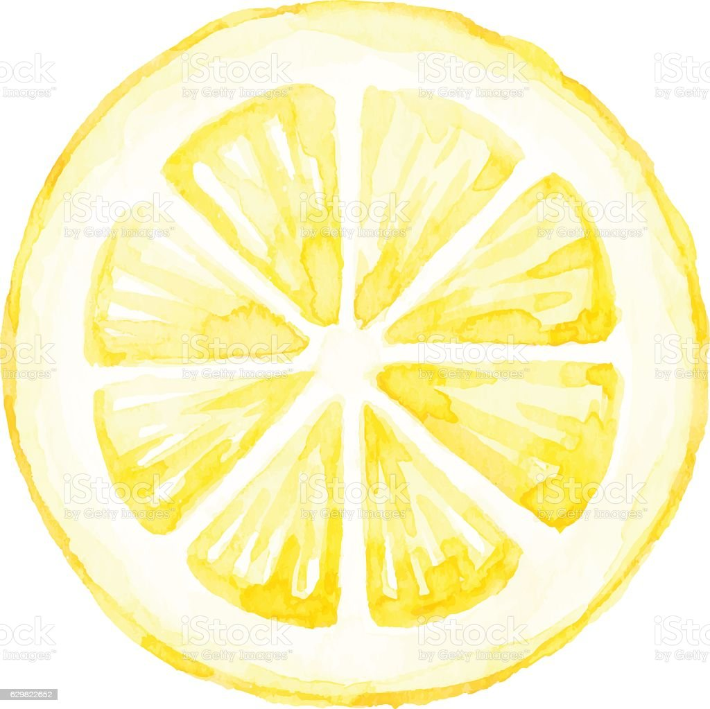 Watercolor Lemon Slice vector art illustration