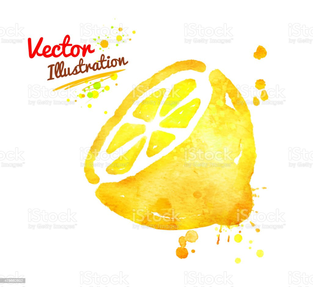 Watercolor lemon. vector art illustration