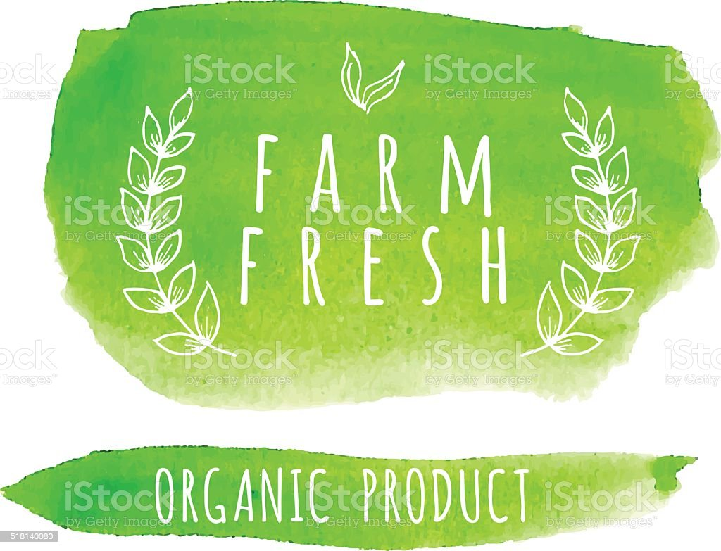 Watercolor organic food label. Eco product badges and elements. vector art illustration