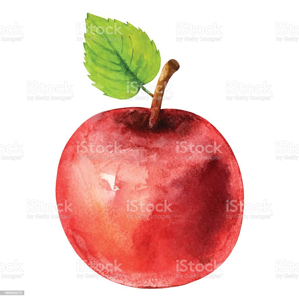 Watercolor red apple fruit with leaf closeup isolated vector art illustration