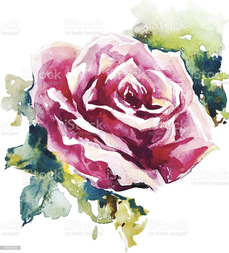watercolor rose. Flower painting. Vector EPS 10. vector art illustration