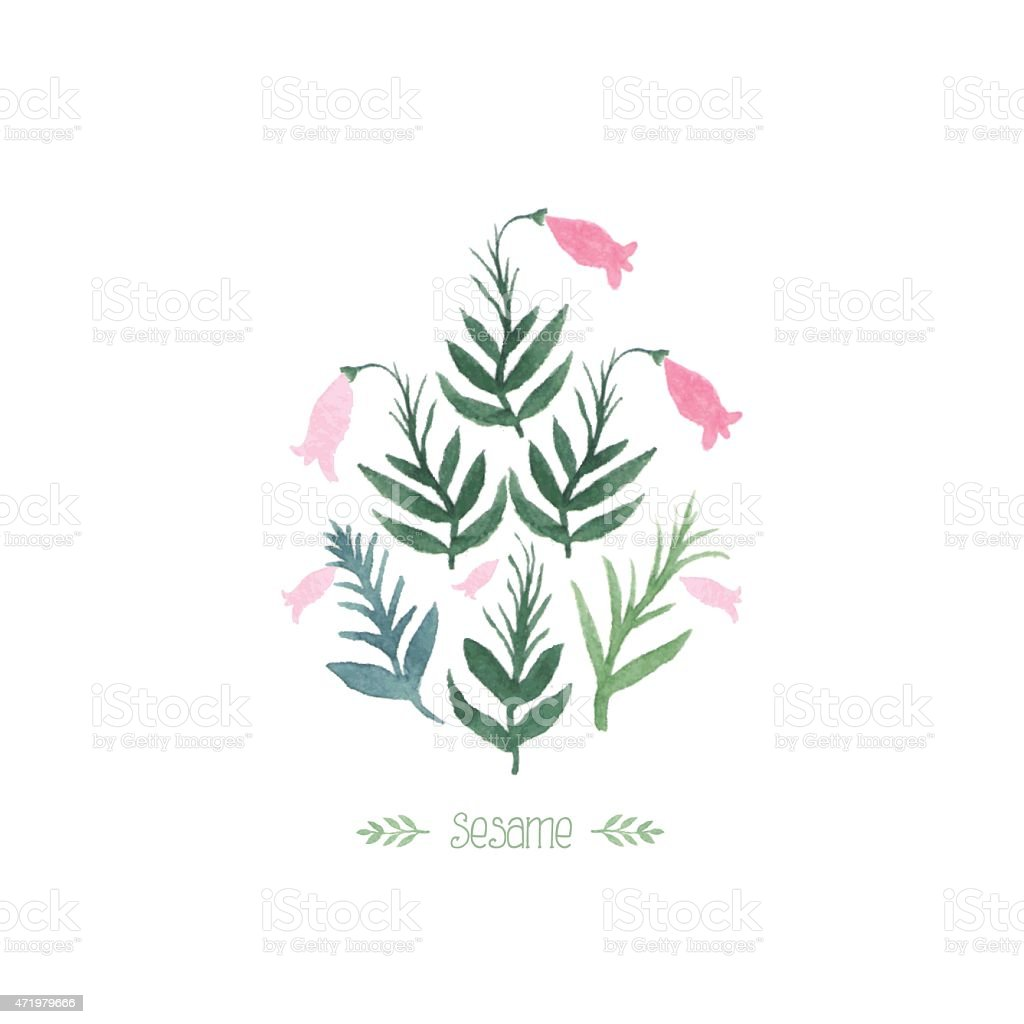 Watercolor sesame plant vector art illustration