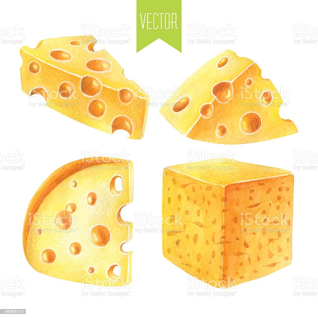 Watercolor set of cheeses vector art illustration
