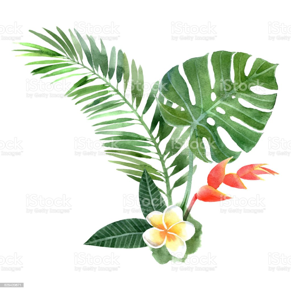 watercolor tropical plants vector art illustration