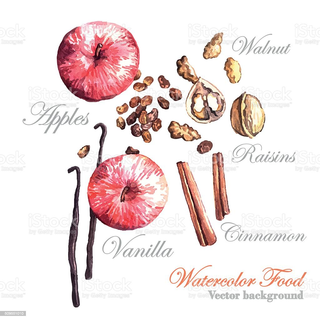 Watercolor vector Apples, raisins, nuts and spices vector art illustration