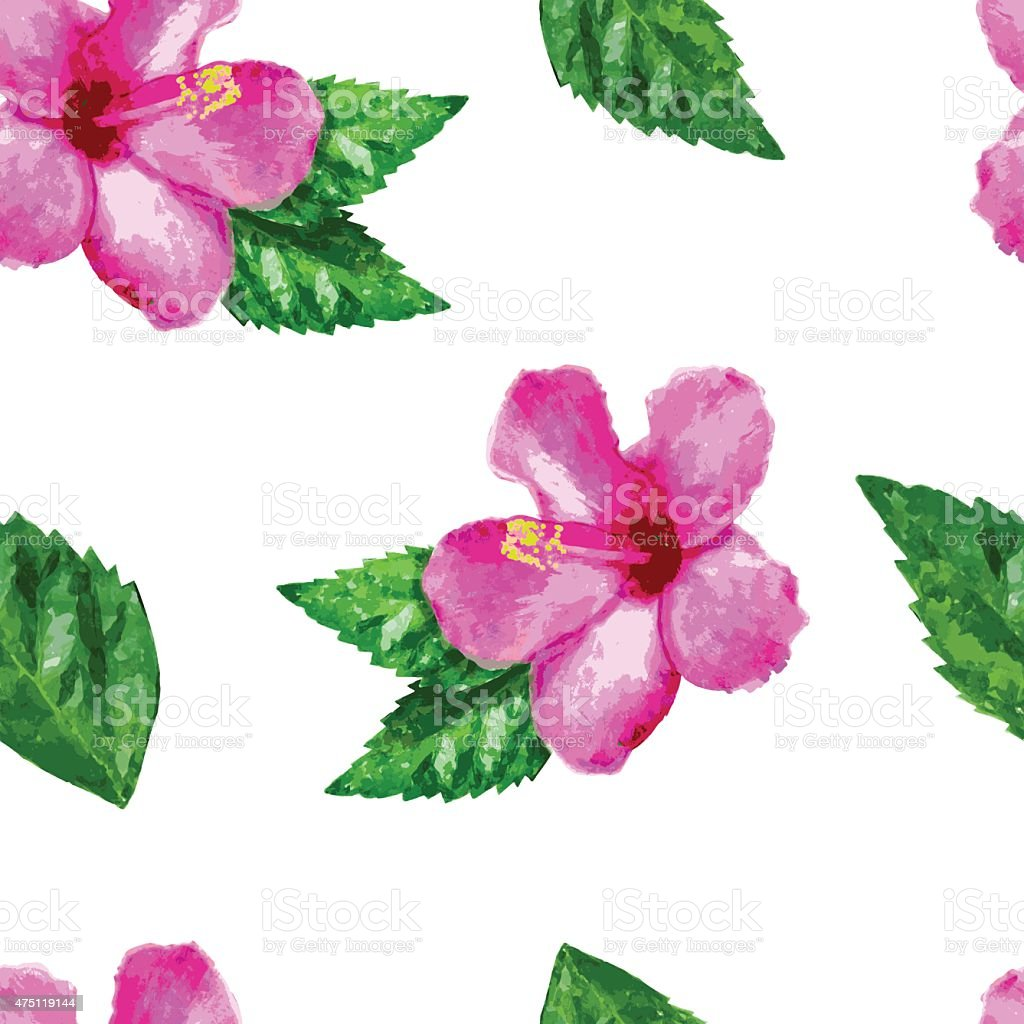 Watercolor vector seamless pattern with hibiscus flower and green watercolor vector seamless pattern with hibiscus flower and green leaves royalty free stock vector dhlflorist Image collections