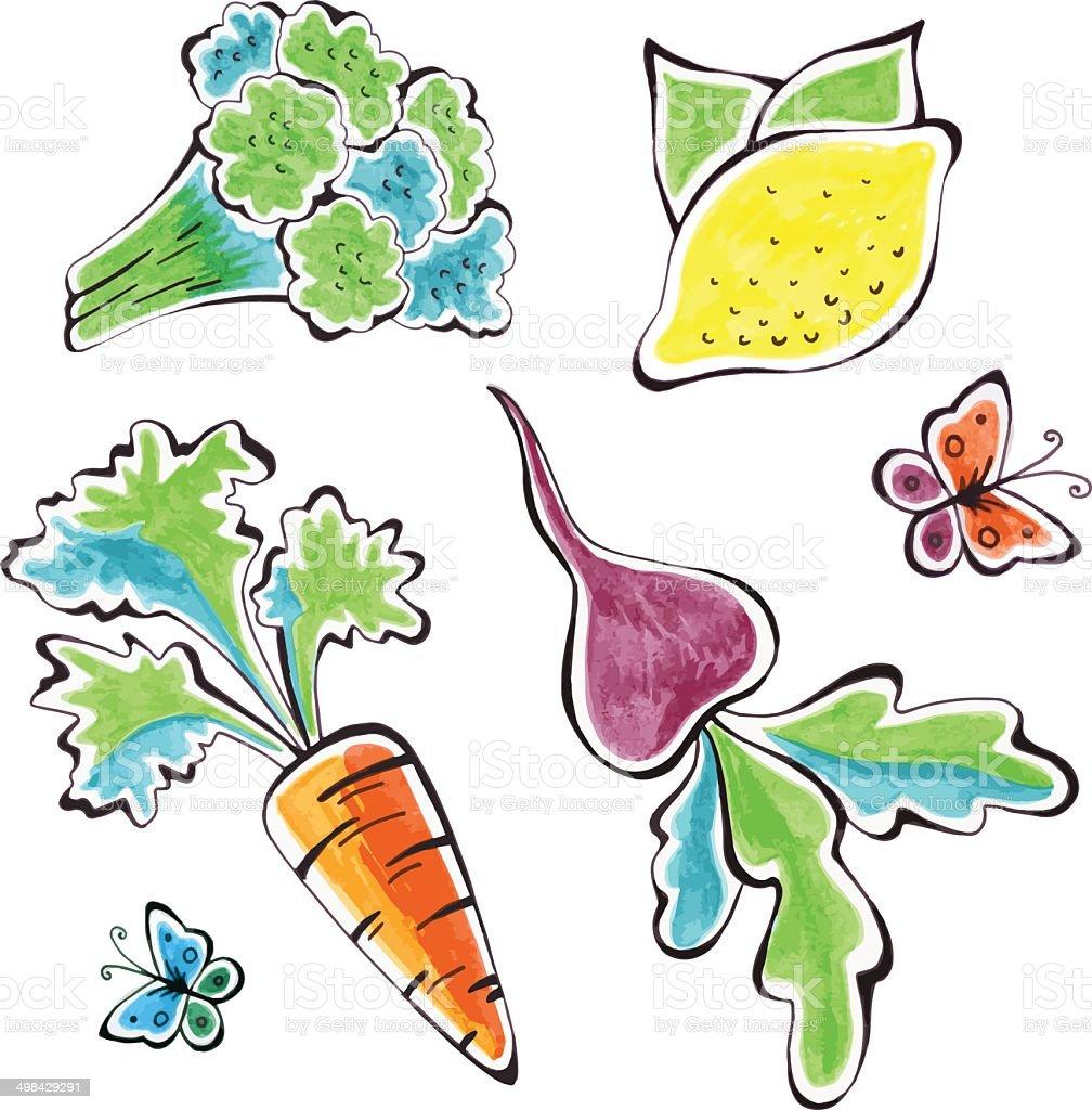 Watercolor vegetables vector art illustration