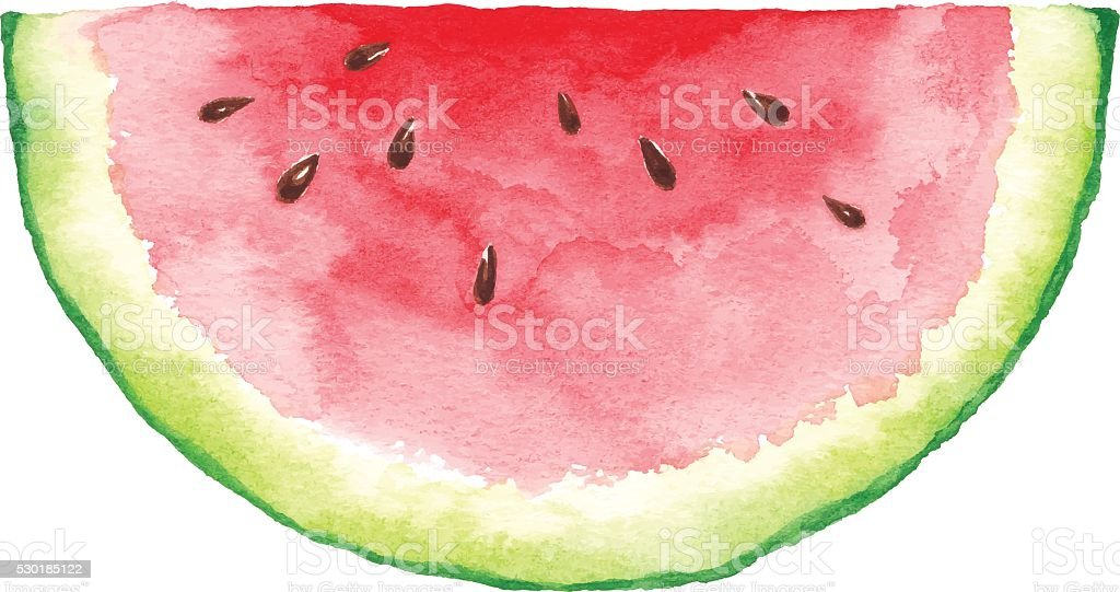 Watercolor Watermelon Slice vector art illustration