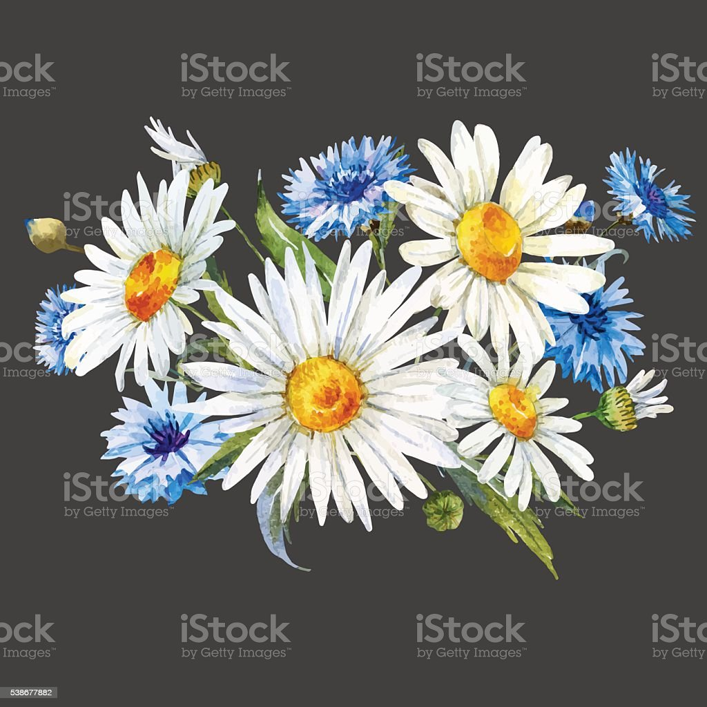 Watercolor wild flowers composition vector art illustration