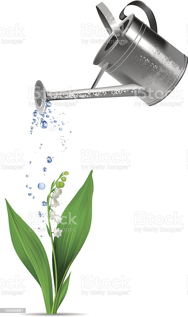Watering can and flower. royalty-free stock vector art