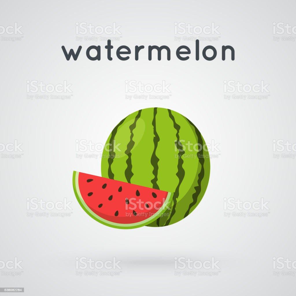 Watermelon and slice. vector art illustration