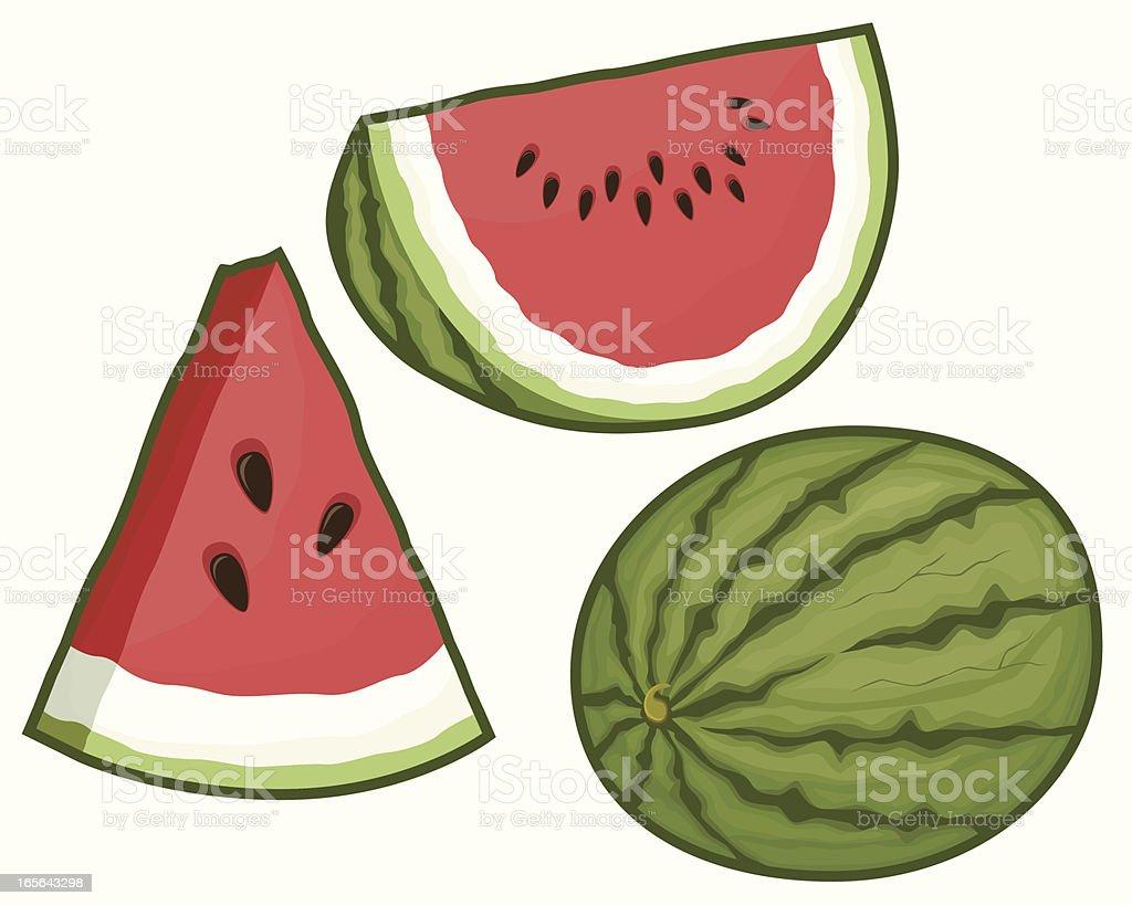 Watermelon Assortment vector art illustration