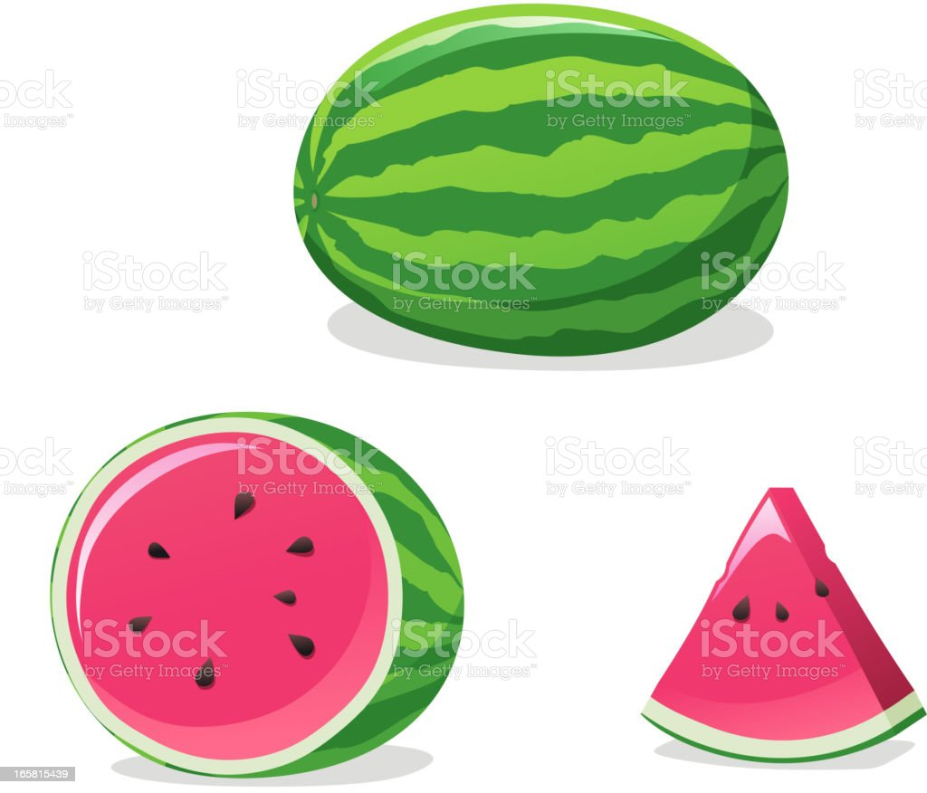 Watermelon set vector art illustration