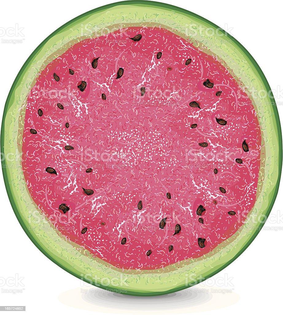 Watermelon Slice Background royalty-free stock vector art
