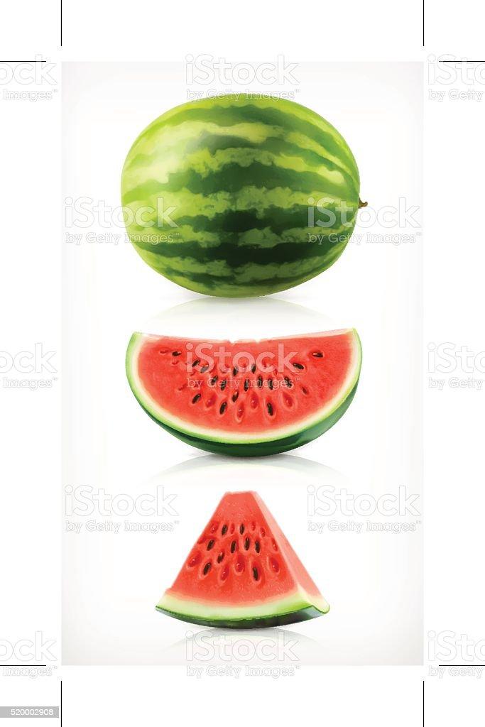 Watermelon, vector icons vector art illustration