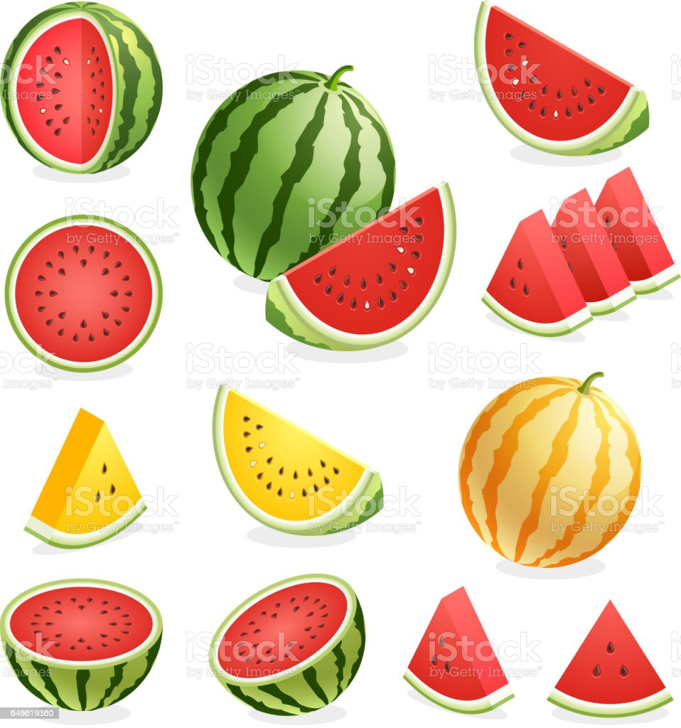Watermelon. vector art illustration
