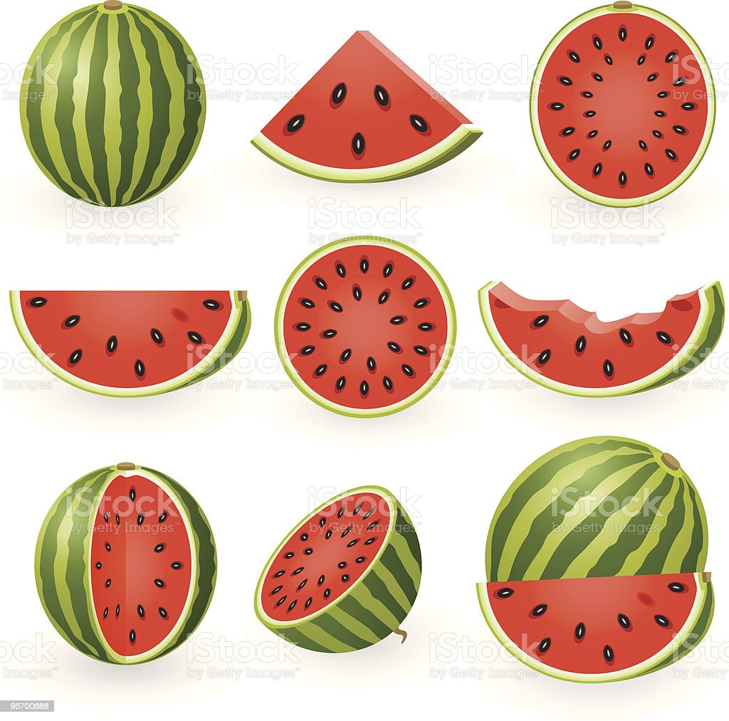 Watermelon vector art illustration
