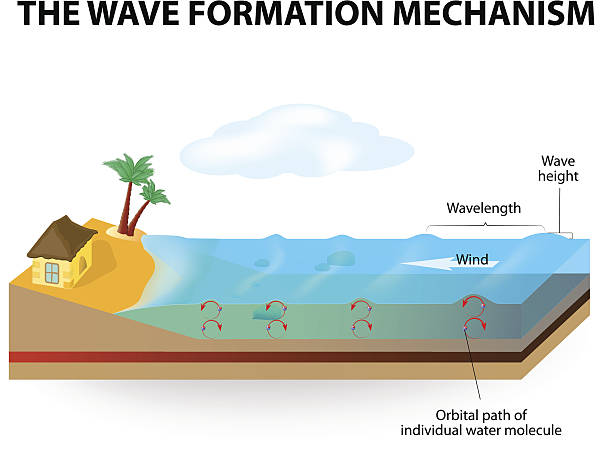 Wave Formation Mechanism Stock Vector Art More Images Of Beach