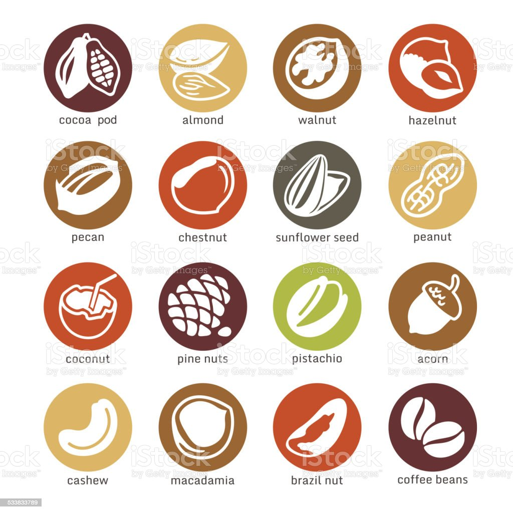 Web icon set - nuts, beans and seed vector art illustration